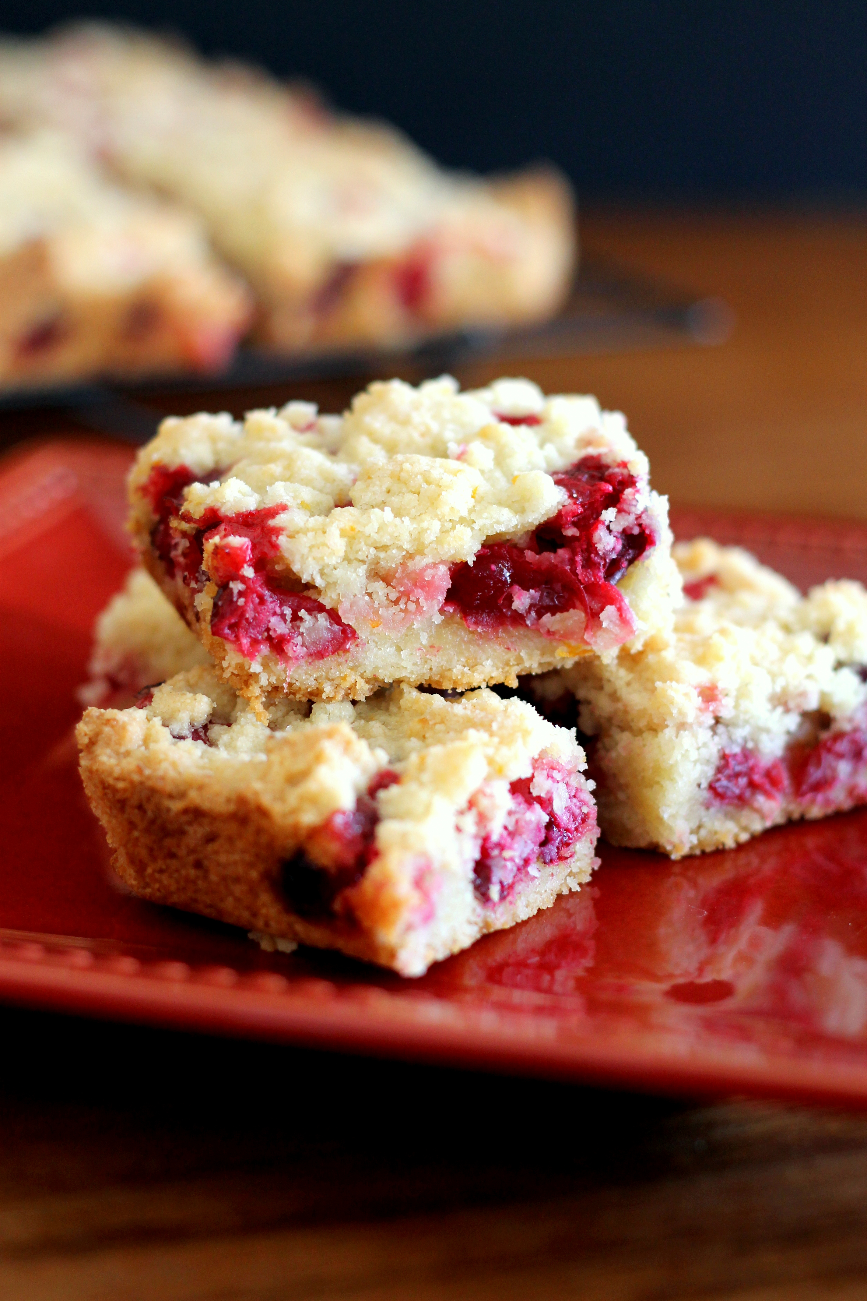 Cranberry Crumb Bars | These easy bars are sweet, tart, and delicious! (From Bakerita.com)